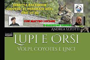 lupi e orsi, volpi, coyotes e linci di andrea izzotti - uomini e lupi a confronto con mat