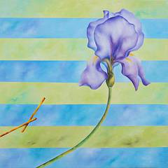 Seven: mostra di pittura alla galleria europa
