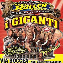Capodanno 2020 rony roller circus