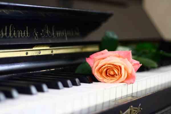 Recital per pianoforte di gaia de lorenzi - palazzo cavagnis - venezia - ore 18:00