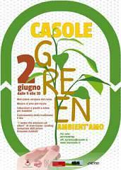 Casole green