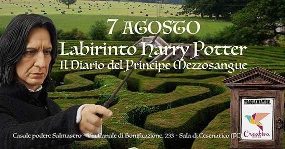 Labirinto harry potter - il diario del principe mezzosangue