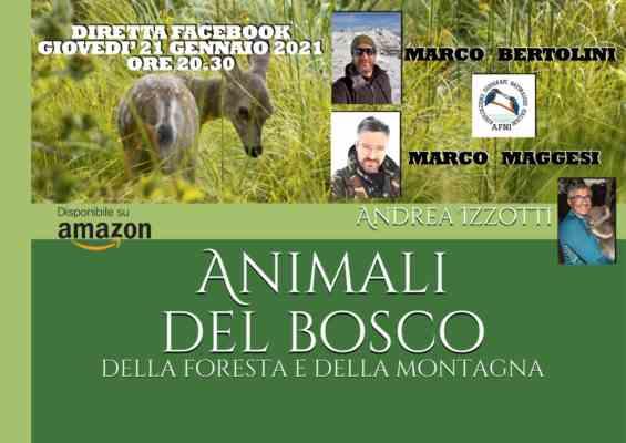 animali del bosco, della foresta e della montagna con marco bertolini e marco maggesi