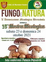 15^ mostra micologica