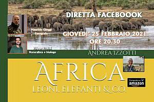 Africa, leoni, elefanti & co.
